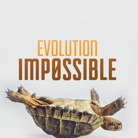 Evolution_Impossible_Cover_RGB__41639.1493761873