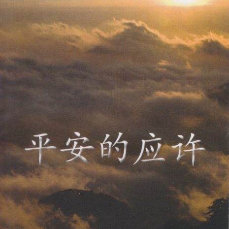 2_Promise_of_Peace_Cover_Chinese