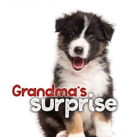Grandmas_Surprise_RGB__84266.149